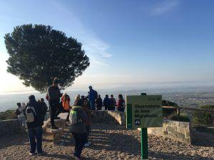 Observatorio de aves migratorias Villafranca